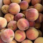fresh peaches missouri